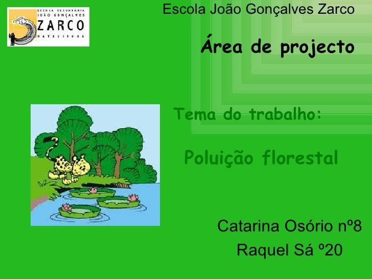 Escola João Gonçalves Zarco Área de projecto   Tema do trabalho:   Poluição florestal   Catarina Osório nº8 Raquel Sá º20