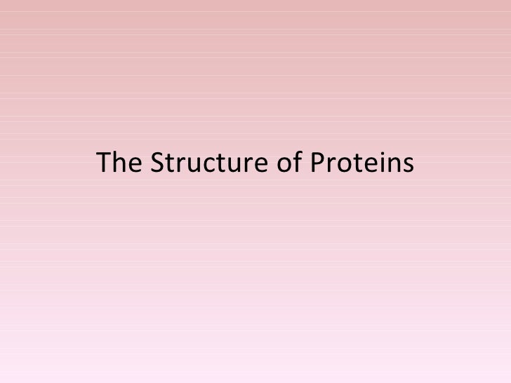 The Structure of Proteins