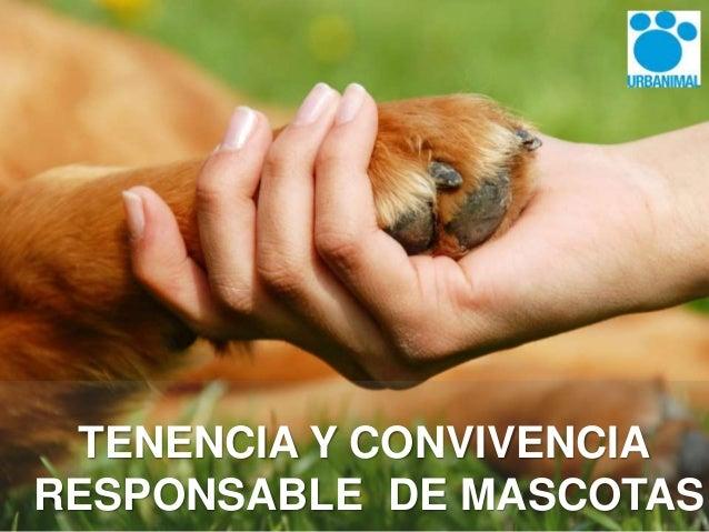 Resultado de imagen para tenencia responsable de animales