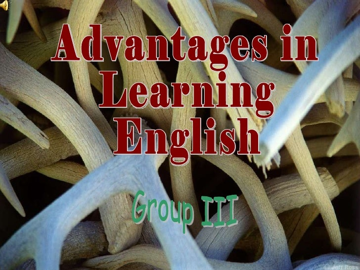 Advantages in  Learning  English Group III