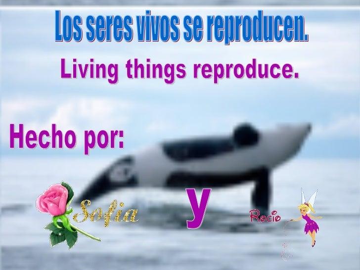 Los seres vivos se reproducen. Hecho por: y Living things reproduce.