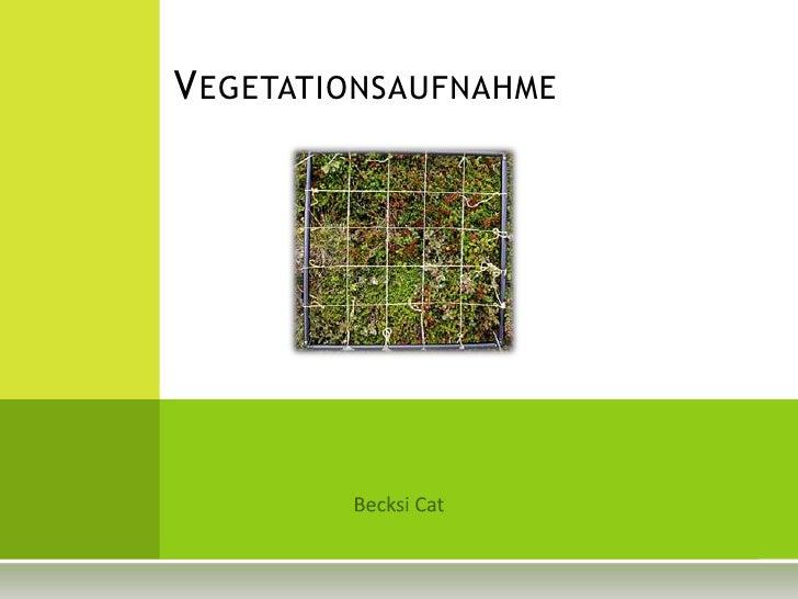 Vegetationsaufnahme<br />BecksiCat<br />