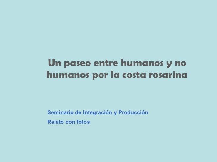 Un paseo entre humanos y no humanos por la costa rosarina Seminario de Integración y Producción Relato con fotos