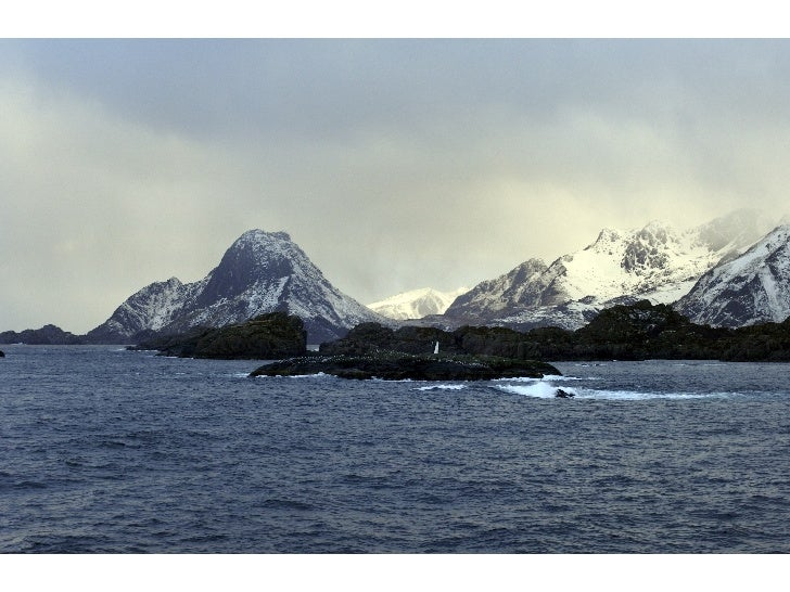 Norska korallrev