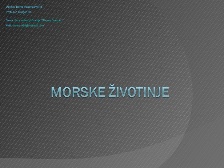 PP2012 R2 01 25 20 Rdivojević Borko - Morske životinje