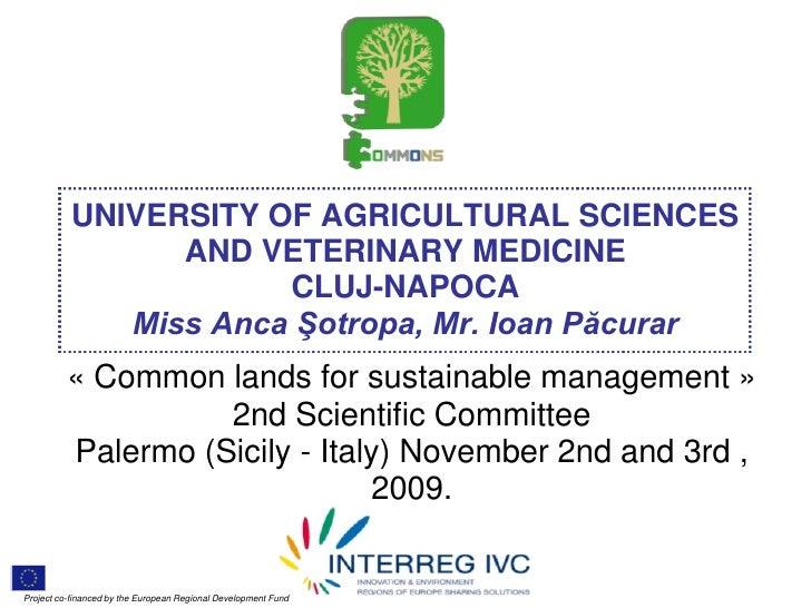 Palermo - Pp9 romania study-case