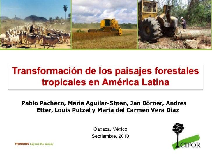 Transformación de los paisajes forestales tropicales en América Latina<br />Pablo Pacheco, Maria Aguilar-Støen, Jan Börner...