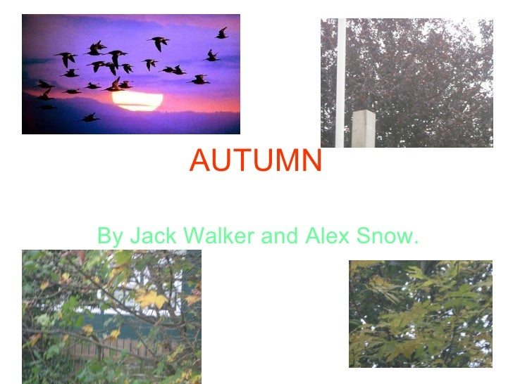 AUTUMN By Jack Walker and Alex Snow.