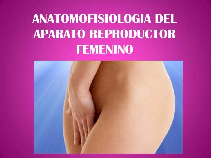 ANATOMOFISIOLOGIA DELAPARATO REPRODUCTOR      FEMENINO
