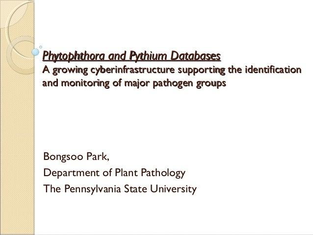 Phytophthora and Pythium DatabasesPhytophthora and Pythium Databases A growing cyberinfrastructure supporting the identifi...