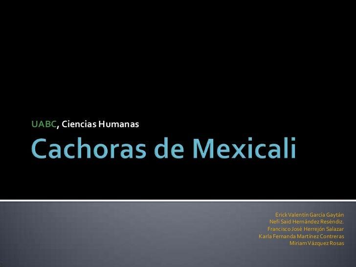 UABC, Ciencias Humanas                                Erick Valentín García Gaytán                             Nefi Said H...