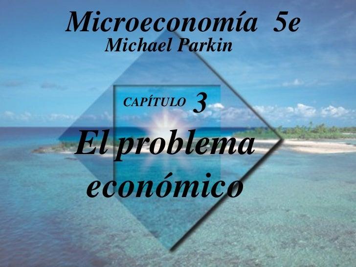 El problema económico