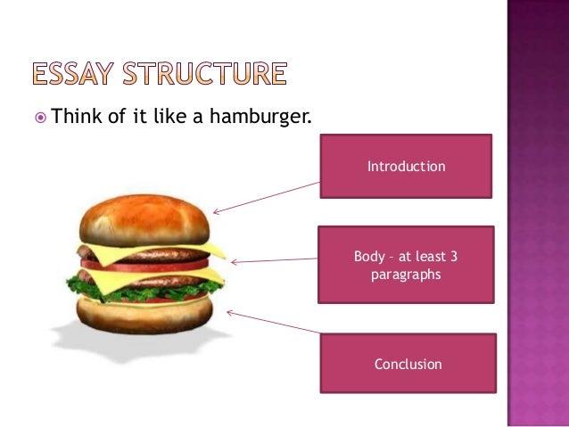essay like hamburger