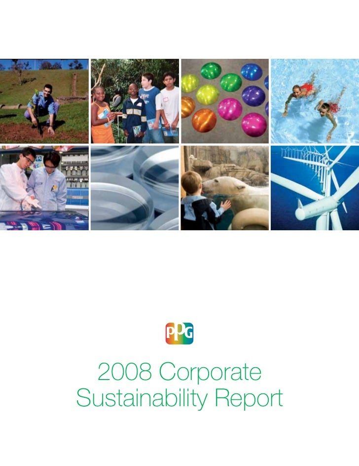 PPG Industries Corporate Sustainability Report - 2008