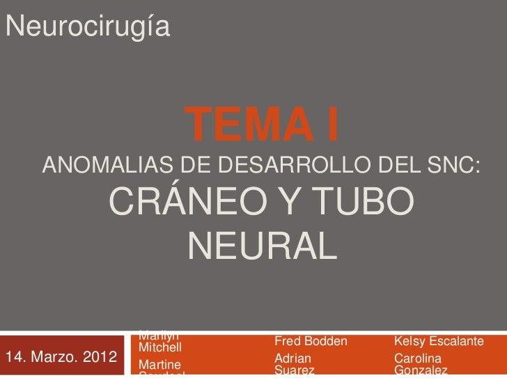 Neurocirugía                             TEMA I    ANOMALIAS DE DESARROLLO DEL SNC:             CRÁNEO Y TUBO             ...