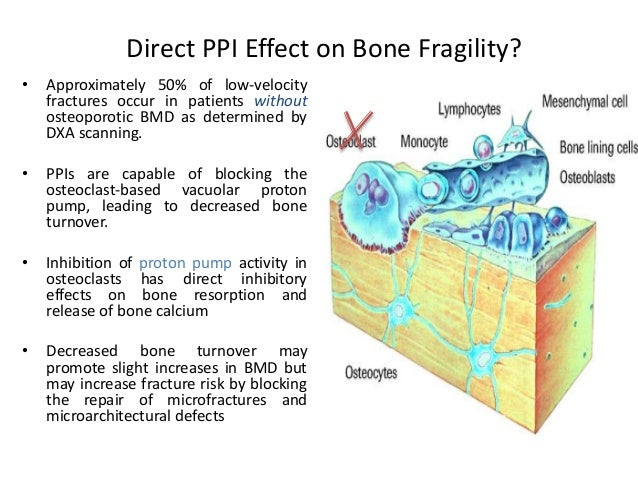 an overview of the studies on the bone mineral and lipid metabolism Effect of different preparations of hormone therapy on lipid and glucose  metabolism, coagulation factors, and bone mineral density in overweight   article outline  several epidemiologic studies have shown that hormone  therapy (ht) with.