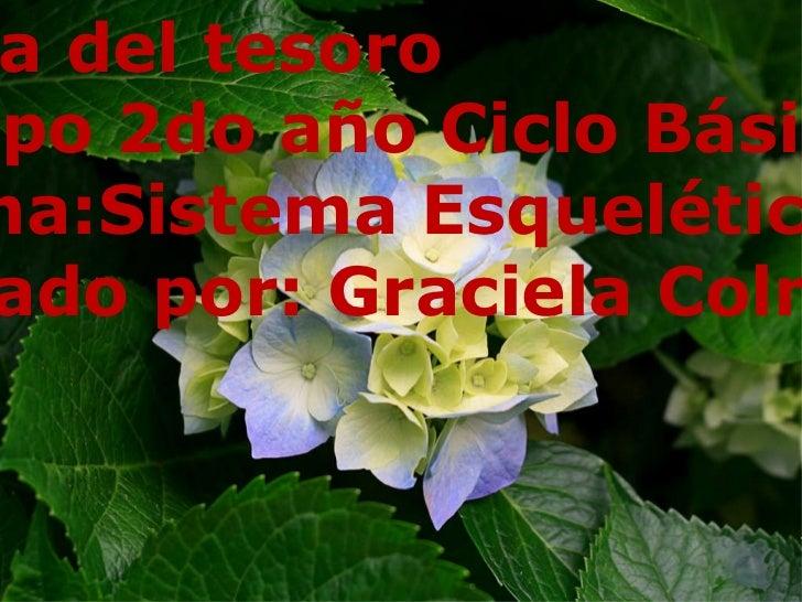 Caza del tesoro  Grupo 2do año Ciclo Básico Tema:Sistema Esquelético Creado por: Graciela Colman