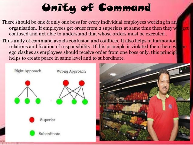 chain of command importance essay