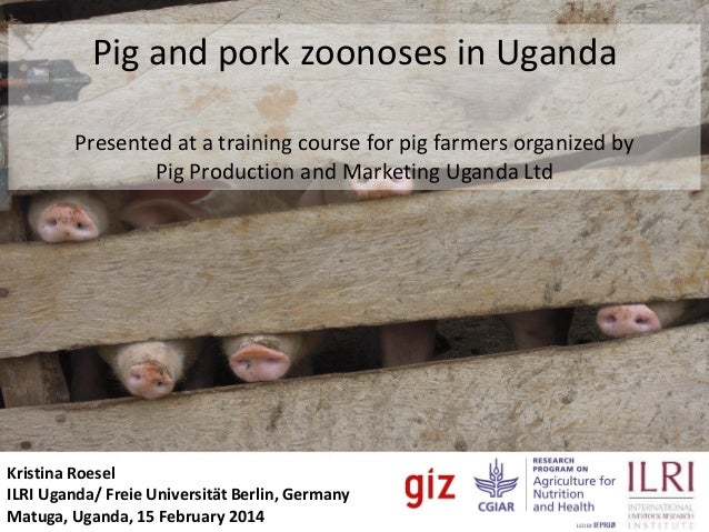 Pig and pork zoonoses in Uganda Safe Food, Fair Food Uganda Presented at a training course for pig farmers organized by Pi...