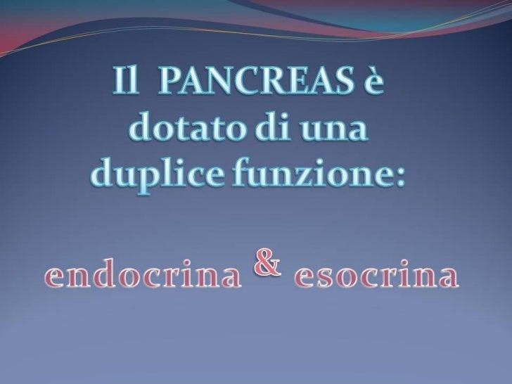 P point funzione pancreas (arianna)