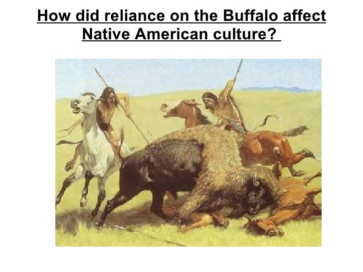 How did reliance on the Buffalo affect Native American culture?