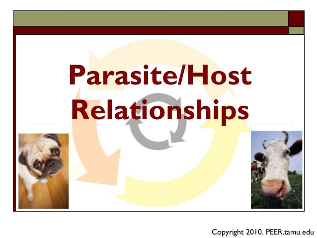 parasites and hosts relationships dating