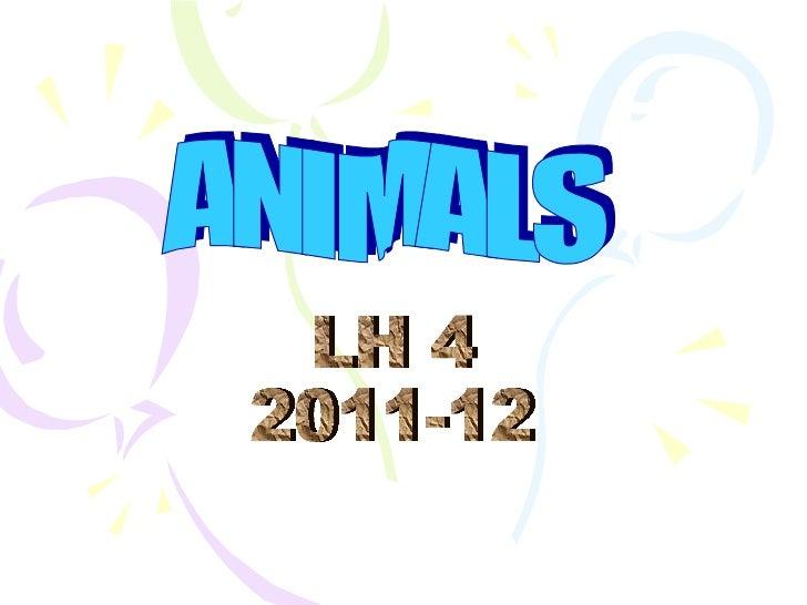 Pp presentation animals