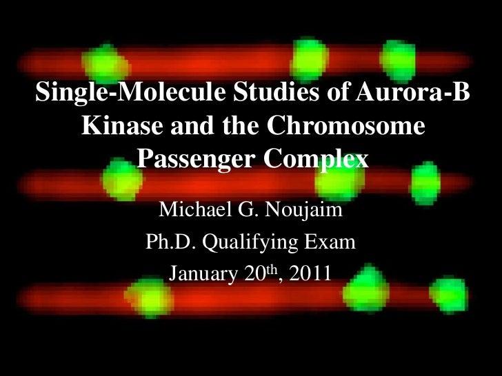 Single-Molecule Studies of Aurora-B   Kinase and the Chromosome        Passenger Complex         Michael G. Noujaim       ...