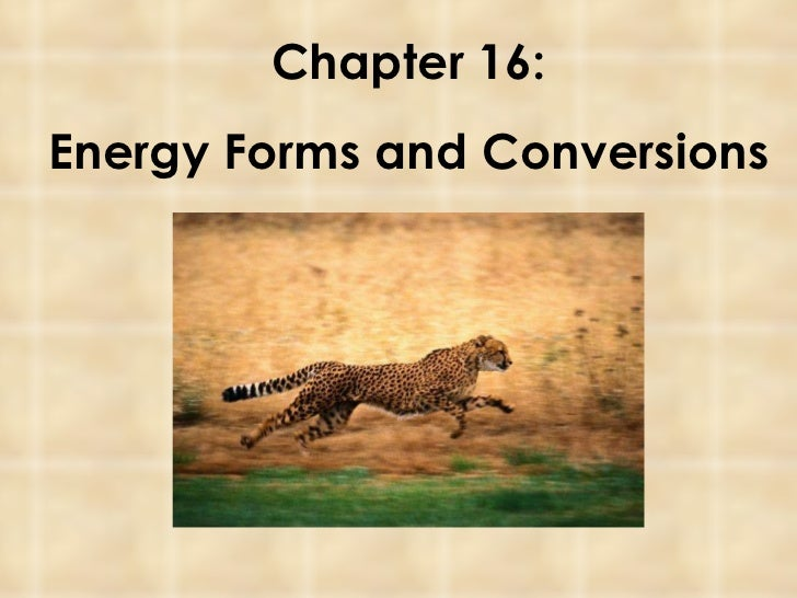 Pps16 energy forms