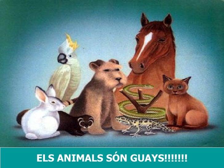 ELS ANIMALS SÓN GUAYS!!!!!!!