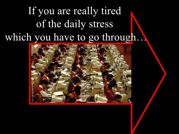 If you are really tired  of the daily stress  which you have to go through…