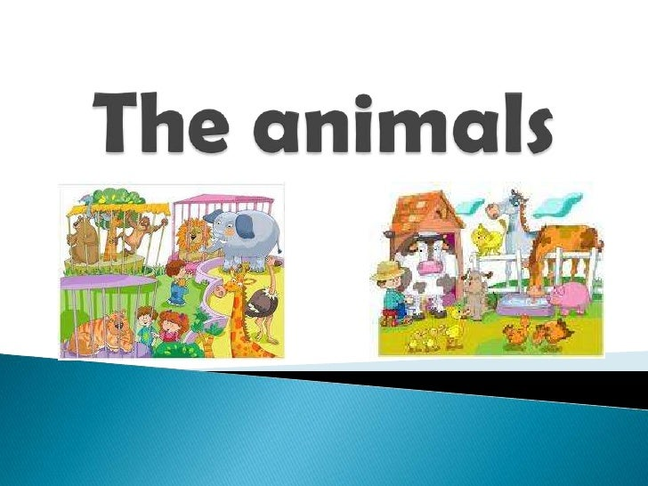 Pps the animals