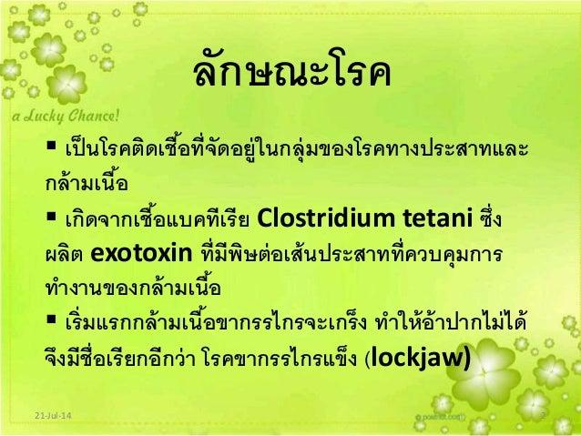 Clostridium Tetani Ppt Clostridium Tetani ซึ่ง