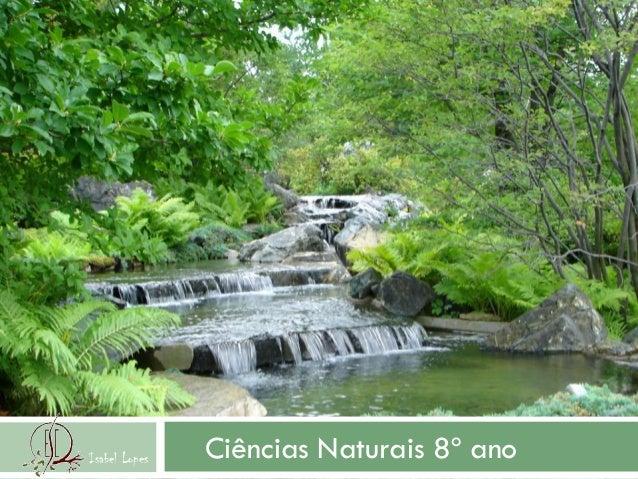 Ciências Naturais 8º anoIsabel Lopes