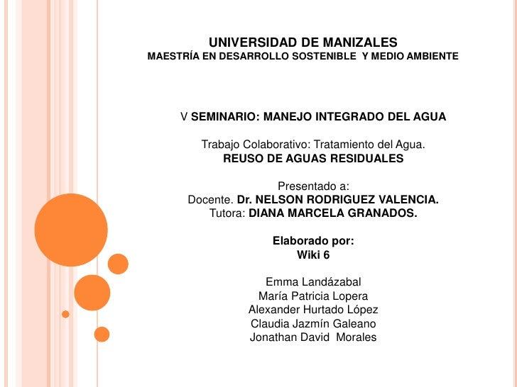 UNIVERSIDAD DE MANIZALESMAESTRÍA EN DESARROLLO SOSTENIBLE Y MEDIO AMBIENTE     V SEMINARIO: MANEJO INTEGRADO DEL AGUA     ...