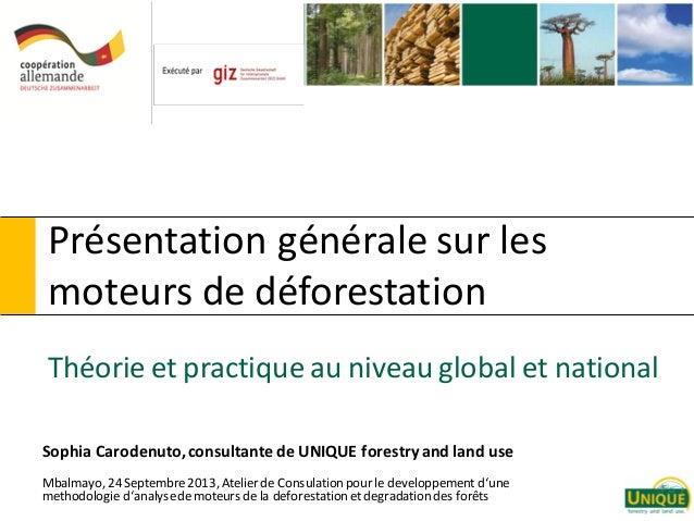 Présentation générale sur les moteurs de déforestation Théorie et practique au niveau global et national Sophia Carodenuto...
