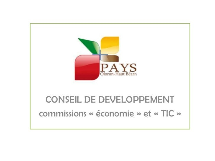 CONSEIL DE DEVELOPPEMENT<br />commissions «économie» et «TIC»<br />