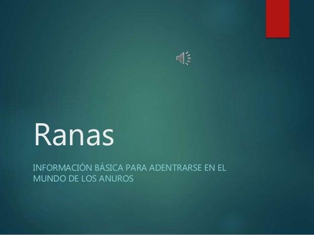 Ranas INFORMACIÓN BÁSICA PARA ADENTRARSE EN EL MUNDO DE LOS ANUROS