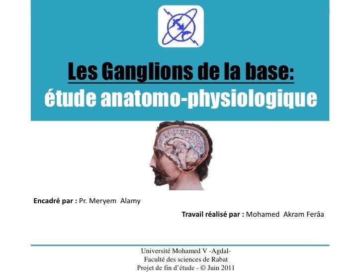 Les Ganglions de la base: étude anatomo-physiologique<br />Encadré par : Pr. Meryem  Alamy<br />Travail réalisé par : Moha...