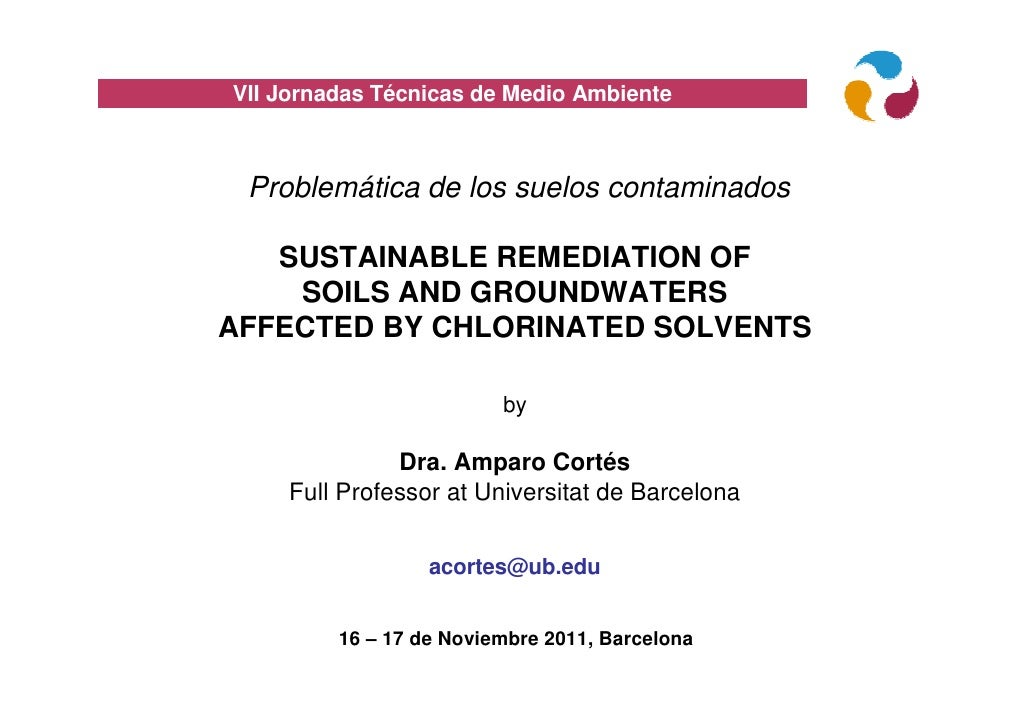 VII Jornadas Técnicas de Medio Ambiente Problemática de los suelos contaminados   SUSTAINABLE REMEDIATION OF    SOILS AND ...