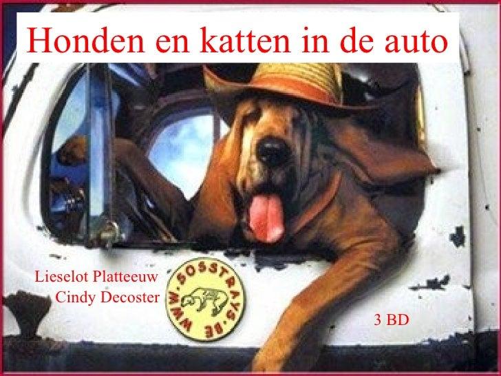 Honden en katten in de auto 3 BD Lieselot Platteeuw Cindy Decoster
