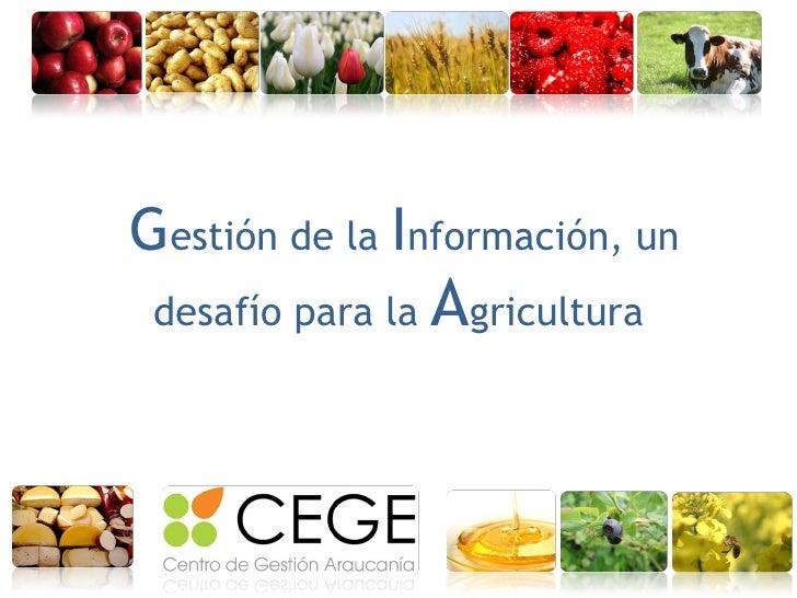 Gestión de la información, un desafío para la agricultura