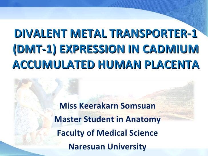 master thesis presentation 26-dec-2011-TAU   Raveh Gonen's Blog