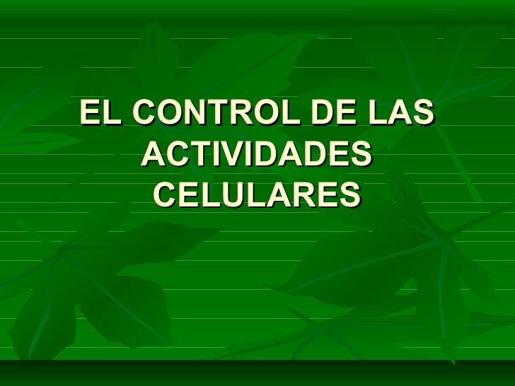 Ppt enzimas   el control de las actividades celulares