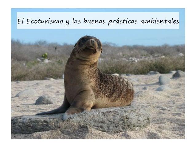 El Ecoturismo y las buenas prácticas ambientales