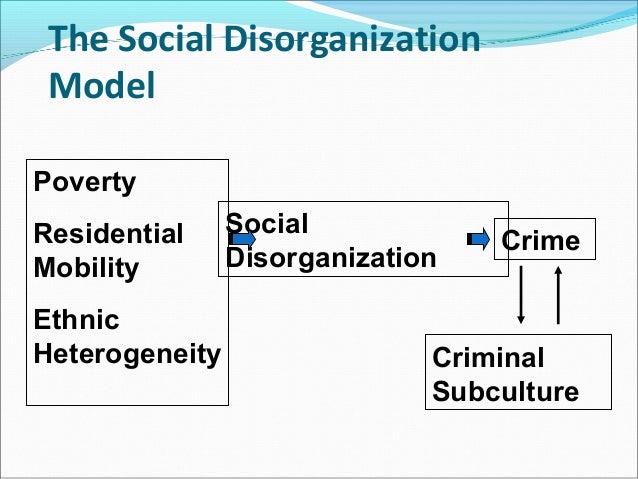 disorganization theory essay social disorganization theory essay