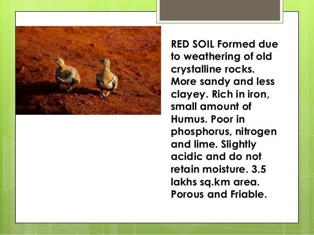 Types of soil for What is found in soil