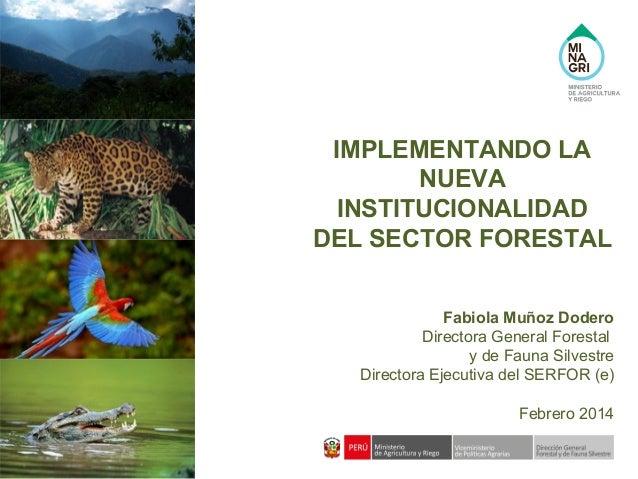 IMPLEMENTANDO LA NUEVA INSTITUCIONALIDAD DEL SECTOR FORESTAL Fabiola Muñoz Dodero Directora General Forestal y de Fauna Si...