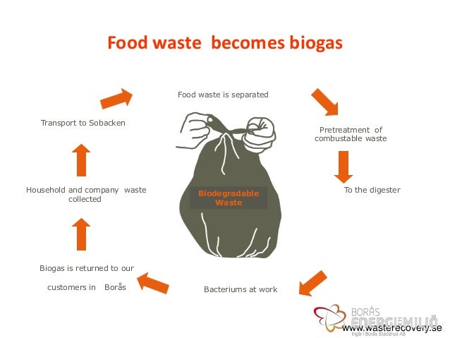 food waste management thesis 587 chapter 10 waste management executive summary post-consumer waste is a small contributor to global greenhouse gas (ghg) emissions (5%) with total emissions.