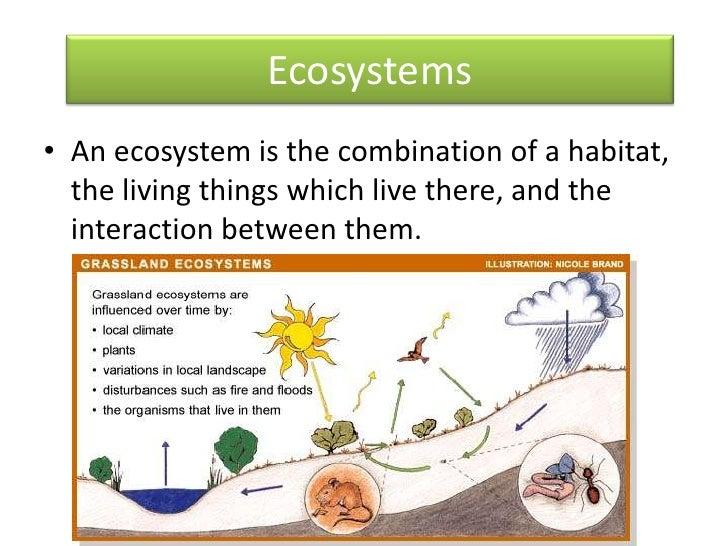 Different Habitats